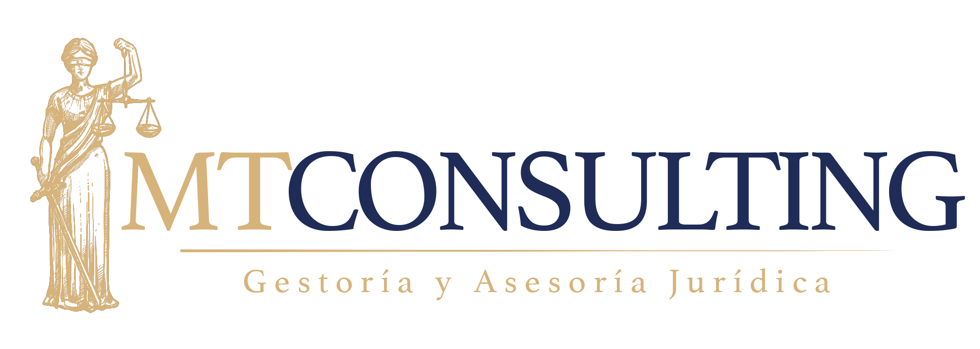Logo mt consulting