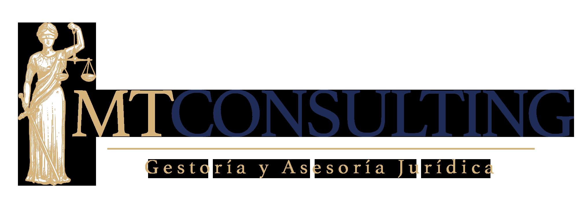 Logo mt consulting